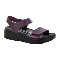 Alegria Playa Purple & Black Crazy Horse