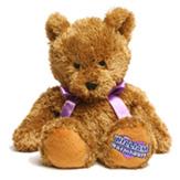 Termofor igračka Beddy Bear